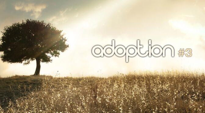 21-0704 Adopsi #3